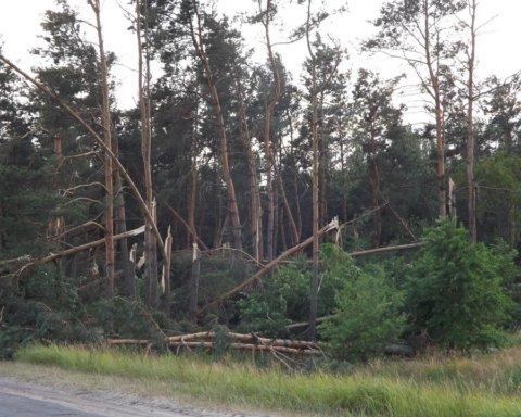 Одразу в кількох областях України пронісся потужний ураган: кадри руйнувань