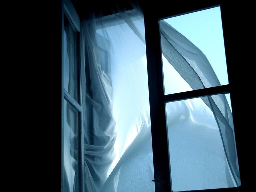 У Запоріжжі мати і дочка практично одночасно викинулися з вікна