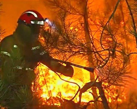 Мощные лесные пожары в Португалии: десятки людей пострадали
