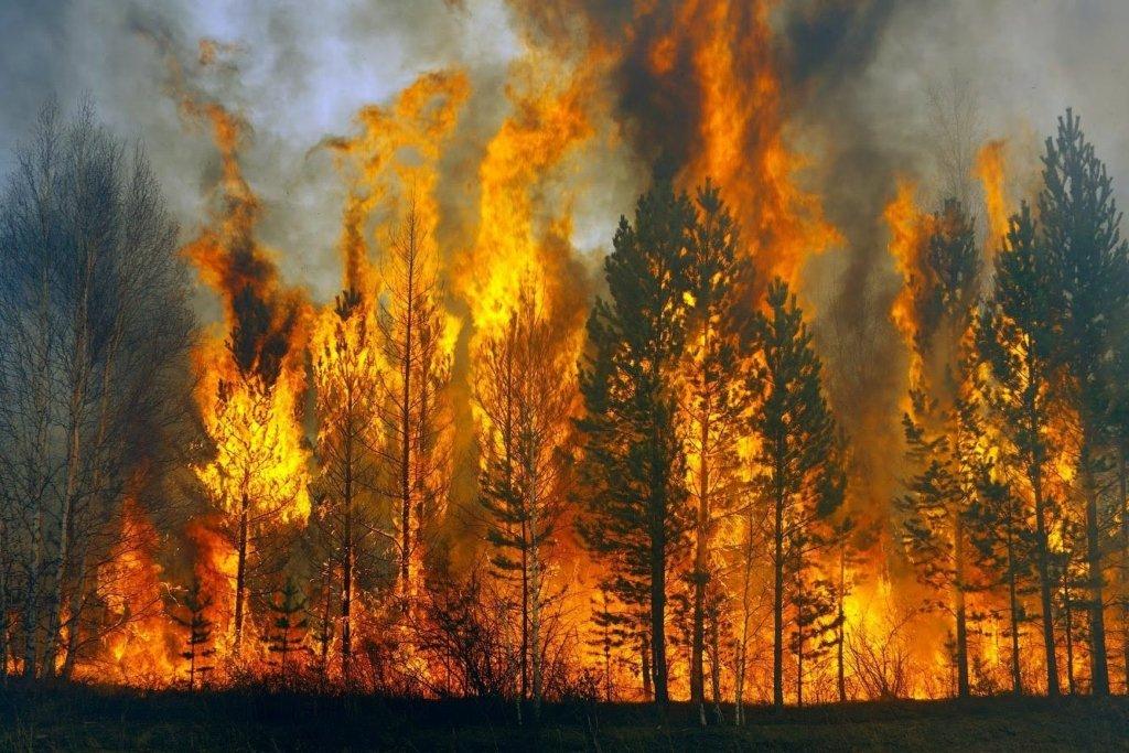 Синоптики попередили про серйозні проблеми з погодою в Україні