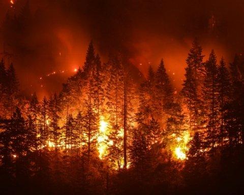 Сибирь накрыл смертельный пожар, пылающий уже неделю: фото и видео последствий