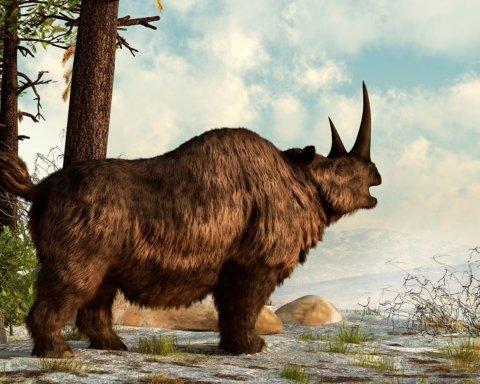 В Украине нашли уникальные останки вымершего животного: как оно выглядит