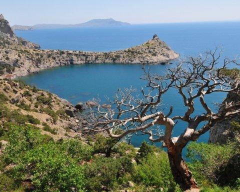 Нафіг з пляжу: росіянку жорстко відшили на курорті в Криму