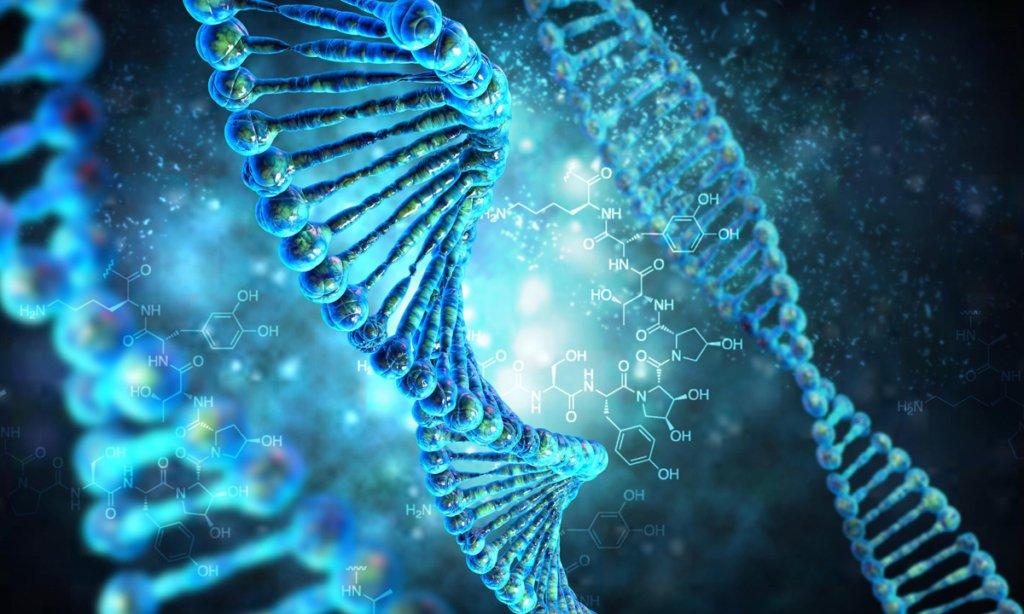 Гена, що відповідає за гомосексуальність, не існує: вчені