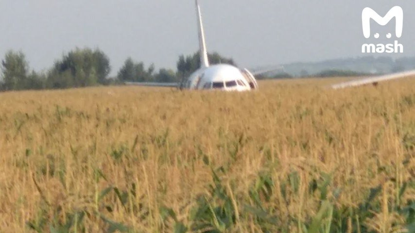 Мы плавно падали: все подробности ЧП с самолетом «Уральских авиалиний» в РФ