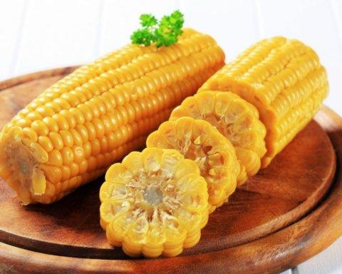 Дієтологи розповіли, від яких хвороб лікує звичайна кукурудза