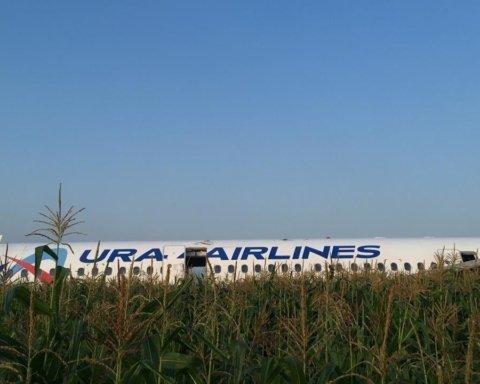 Самолет экстренно приземлился в поле: первые фото с места ЧП в России