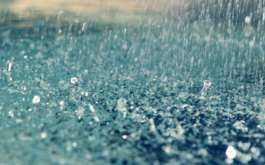 Дождливая осень: синоптики огорчили прогнозом погоды на завтра