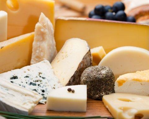 Диетологи рассказали о сырах, которые не стоит пробовать ради собственного же здоровья