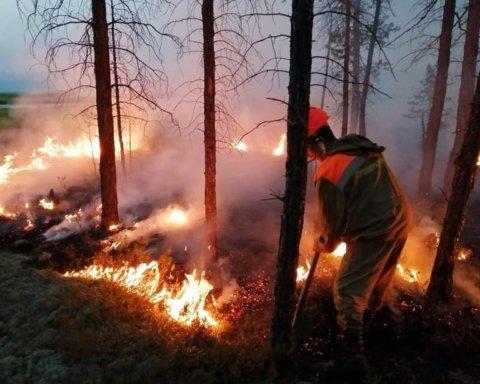 Названа головна причина пожежі у Сибіру, наслідки якої відчули й у США