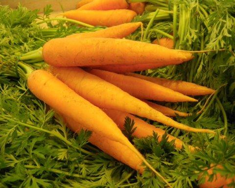 Дієта на моркві: названо дуже дієвий рецепт