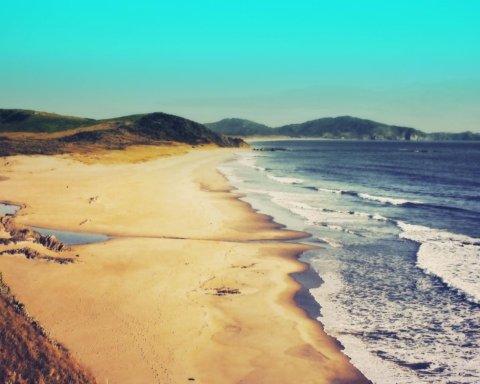 На пляж Новой Зеландии выбросило кокаина на $2 млн