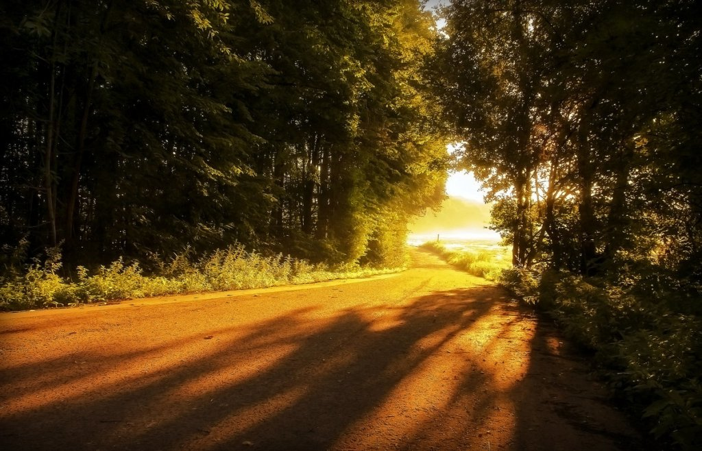 Україну накрила 35-градусна спека: синоптики оновили прогноз погоди