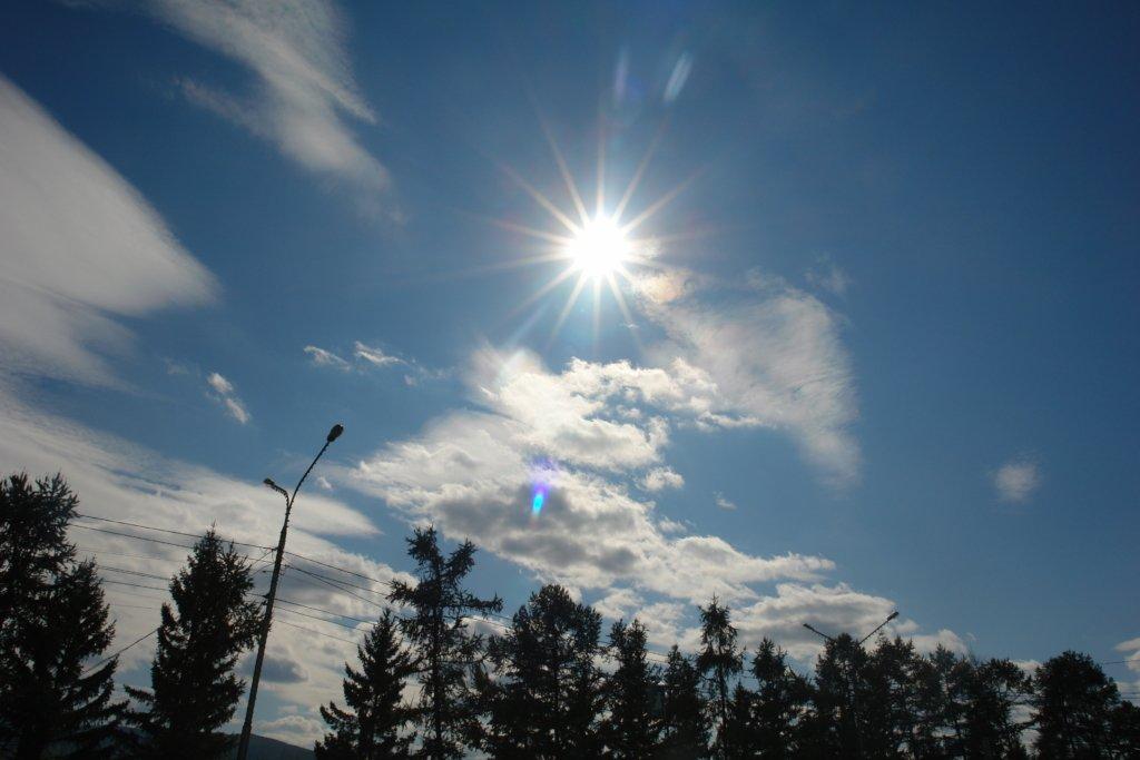 Солнечно, но морозно: какая погода будет сегодня в Украине