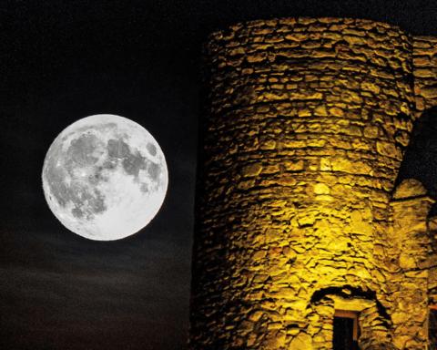 Мільярдер розпочав пошук дівчини для польоту на Місяць: подробиці та фото