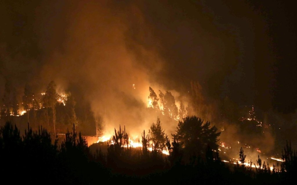 Каліфорнія в вогні: Шварценеггер і зірки Голлівуду покинули свої будинки