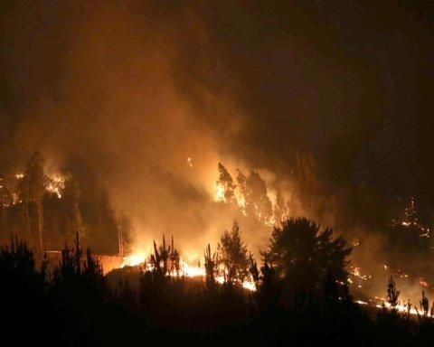 Калифорния в огне: Шварценеггер и звезды Голливуда покинули свои дома