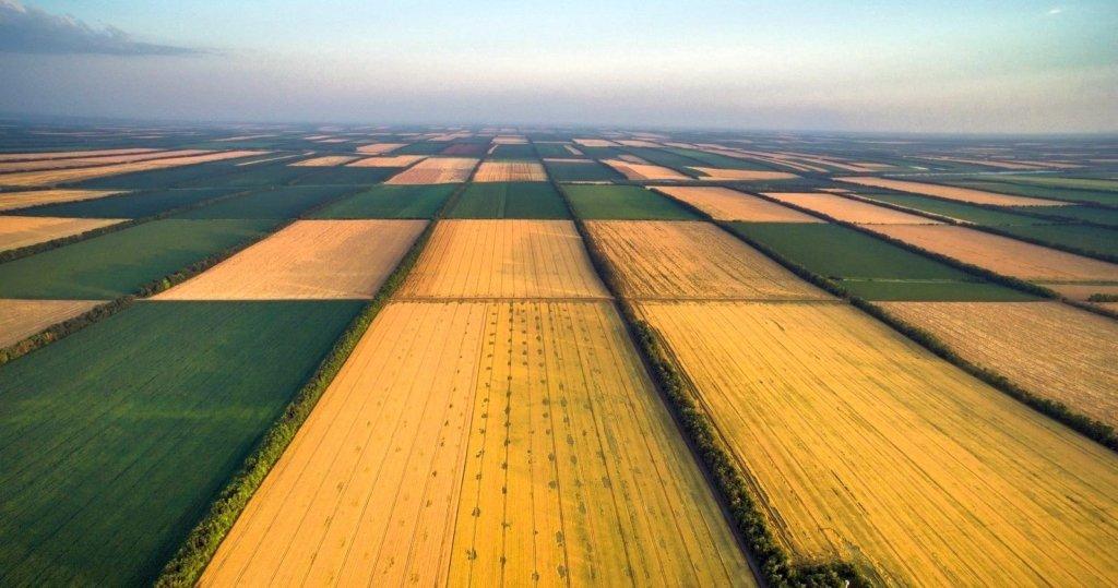 Аренда земли в Украине и Европе: эксперт шокировала ценами