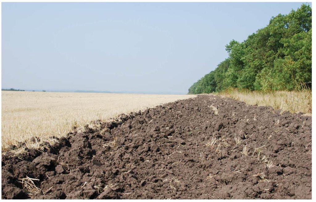 Названо несподівану причину погіршення якості ґрунту