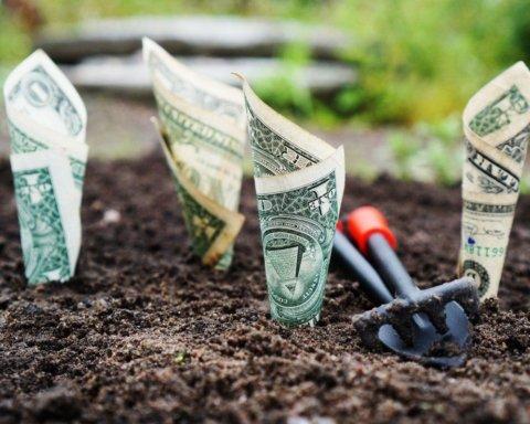 Рада приняла закон о рынке земли: что нужно знать