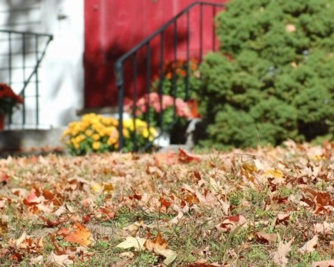 Сухо та сонячно: синоптики розповіли про погоду на тиждень