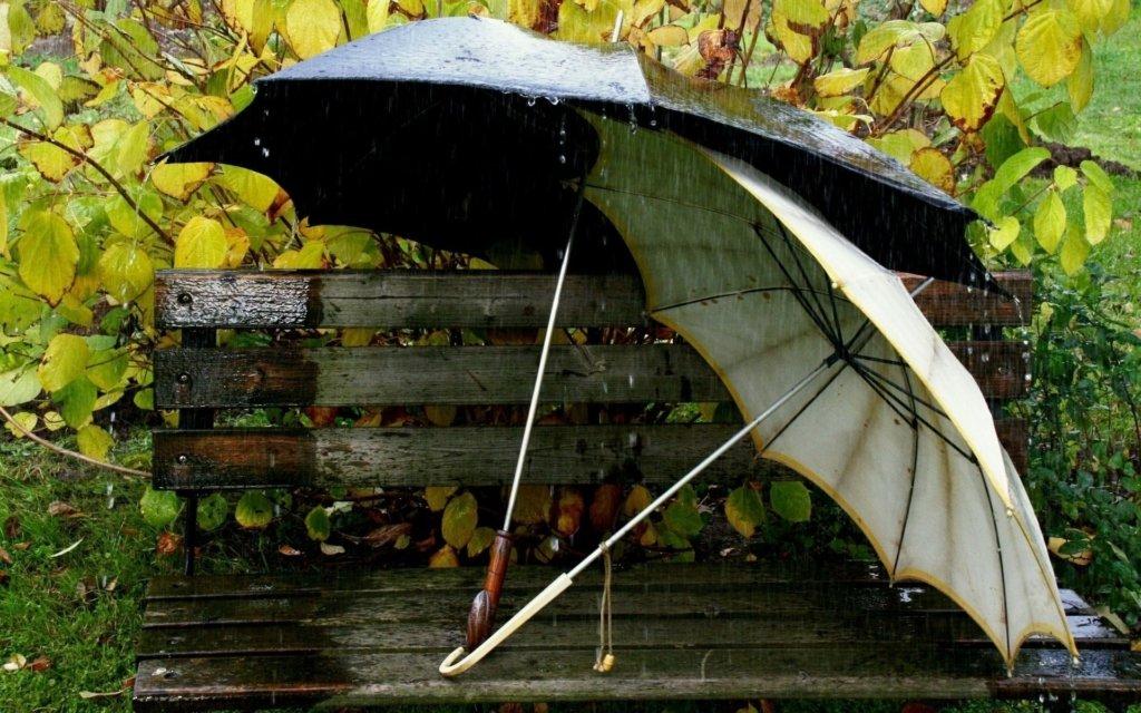 В Укргідрометцентрі розповіли, коли прийде справжня осінь