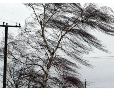 На Київ насувається ураганний вітер: як захиститися
