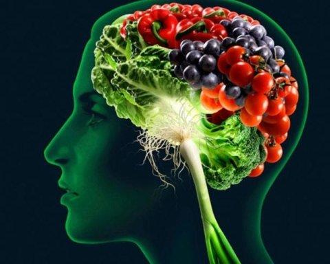 Диетологи рассказали о продуктах, которые необходимо ввести в рацион для здоровья мозга