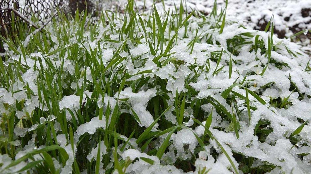 В Україну повернуться 10-градусні морози: синоптики назвали дату похолодання
