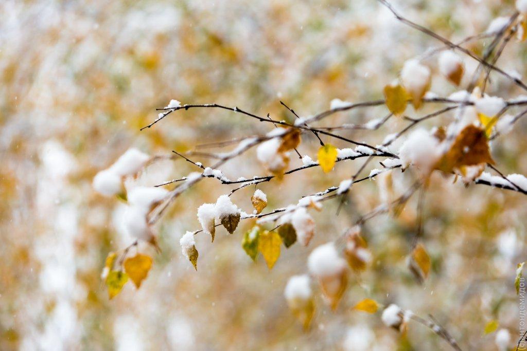 Суне холоднеча: народний синоптик розповів про погоду в жовтні