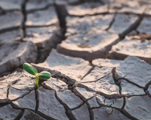 Украина превращается в Грецию по климату: что будет с урожаем в этом году