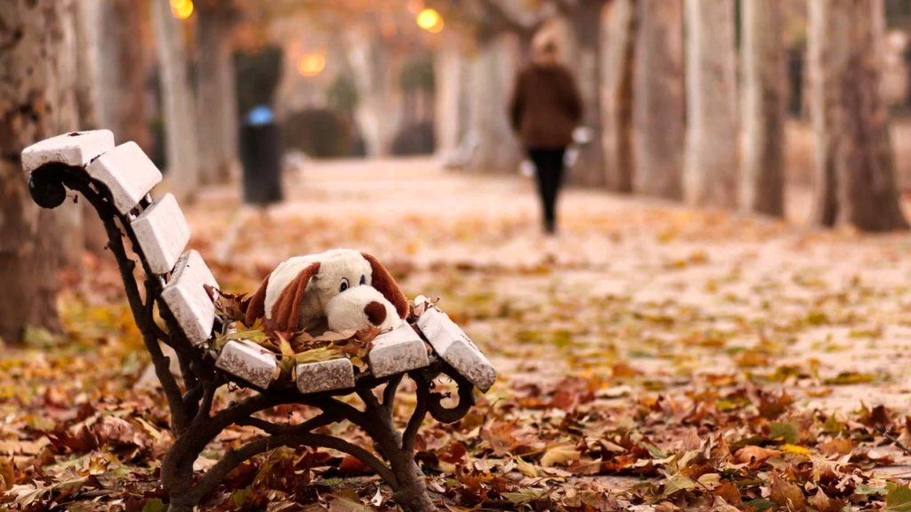 Осіння хандра - названо способи подолати сезонну депресію