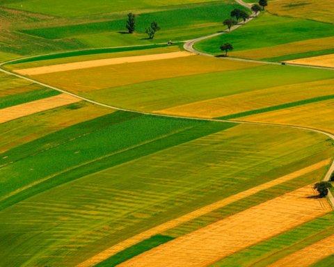 В Раде назвали минимальные цены для продажи земли в Украине
