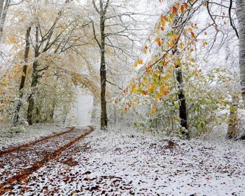 Постійні дощі та холод: синоптик дав невтішний прогноз погоди на листопад