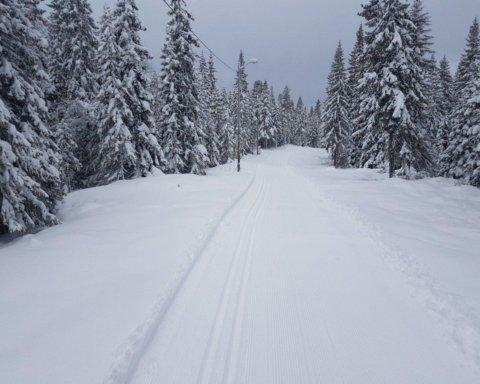 Карпати засипало метровим шаром снігу: неймовірні фото