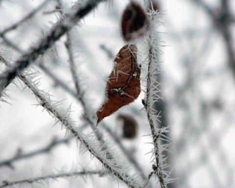 Коли почнеться справжня зима: синоптик назвав точну дату