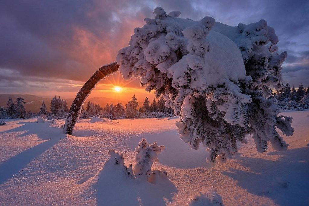 Всю Украину засыпет снегом: Укргидрометцентр дал прогноз на декабрь