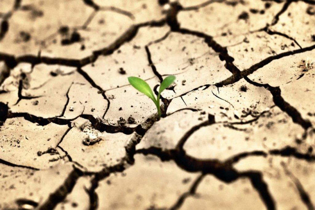 Смертельна спека насувається: вчені попередили про катастрофу