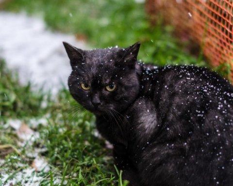 12-градусні морози та сніг: синоптик засмутив прогнозом на листопад