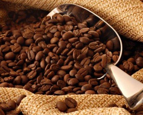 Специалисты назвали малоизвестные факты о кофе