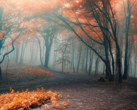 В обіймах антициклону: якою буде погода в Україні до кінця тижня