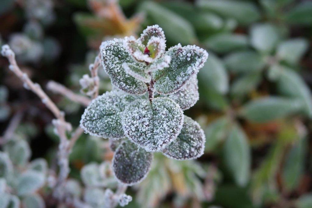 Холодно і без дощів: прогноз погоди на сьогодні
