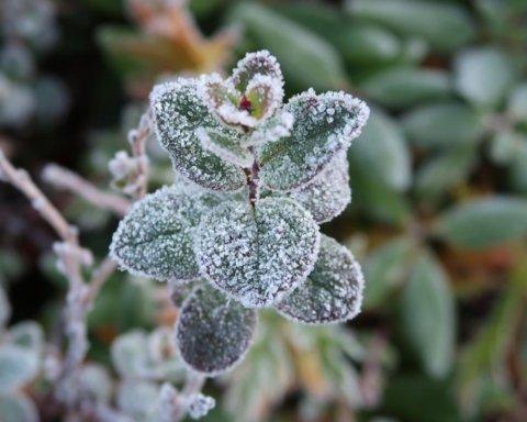 В Украину ворвутся заморозки: синоптик предупредила об очень плохой погоде