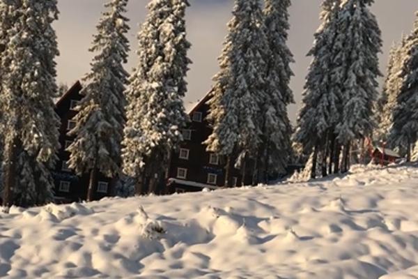 Карпати продовжує засипати снігом: нові атмосферні фото та відео
