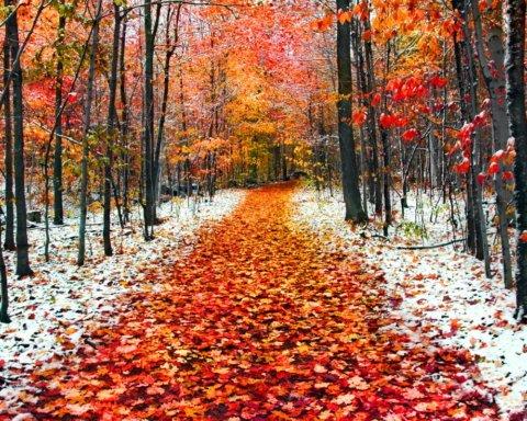 До 30 градусов мороза: синоптики удивили прогнозом на ноябрь