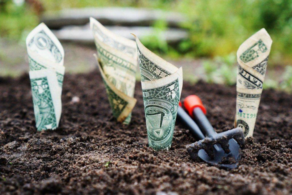 Зеленский провел переговоры с МВФ о рынке земли: в «Слуге народа» сообщили детали