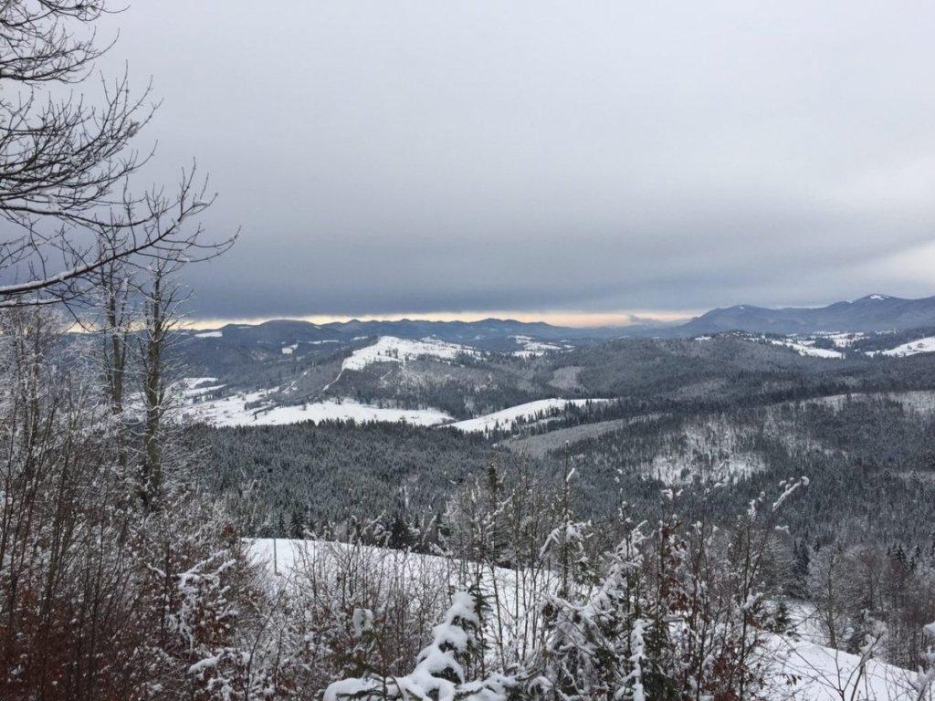 В Карпатах выпало полметра снега: впечатляющие фото