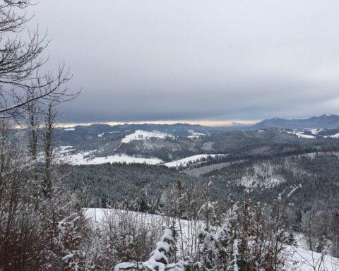 Насипало півметра снігу: у Карпати прийшла справжня зима