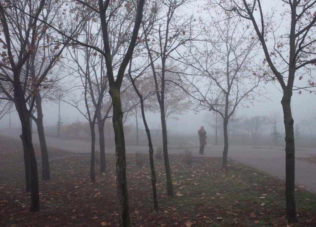 Сиро з туманами та дощами: озвучено прогноз погоди на вихідні