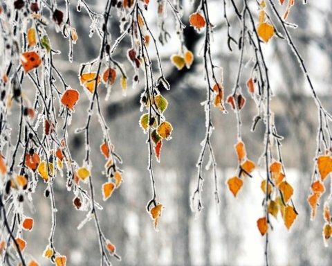 Мороз  і сонце: синоптики розповіли про погоду в неділю